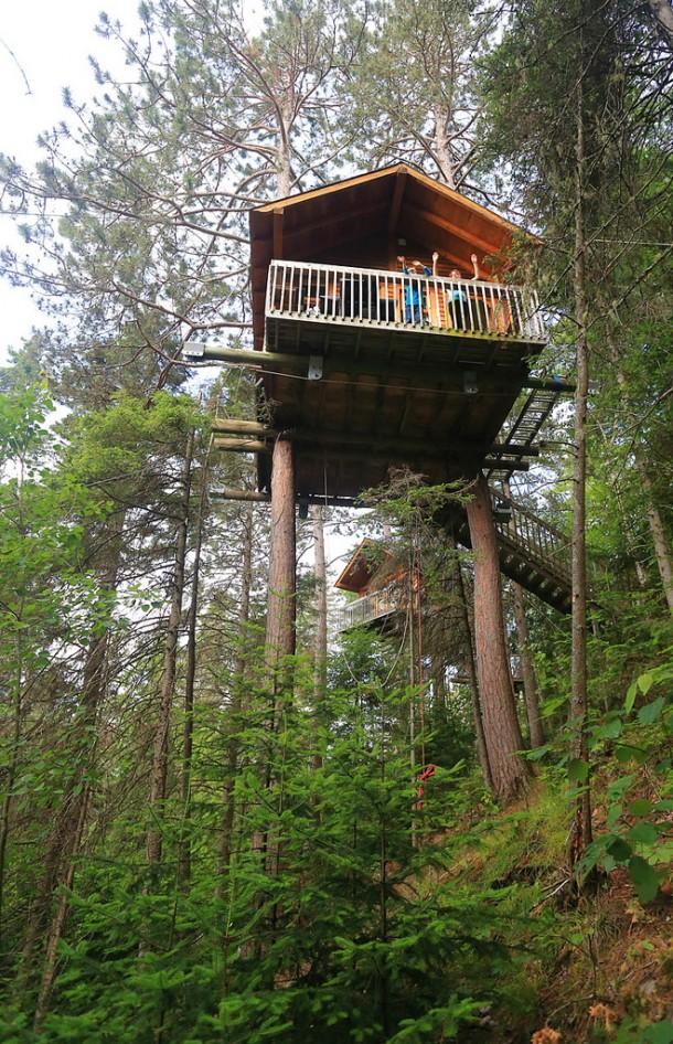 maison dans les arbres - cap jaseux