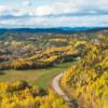 Paysage d'automne - Laurent Silvani